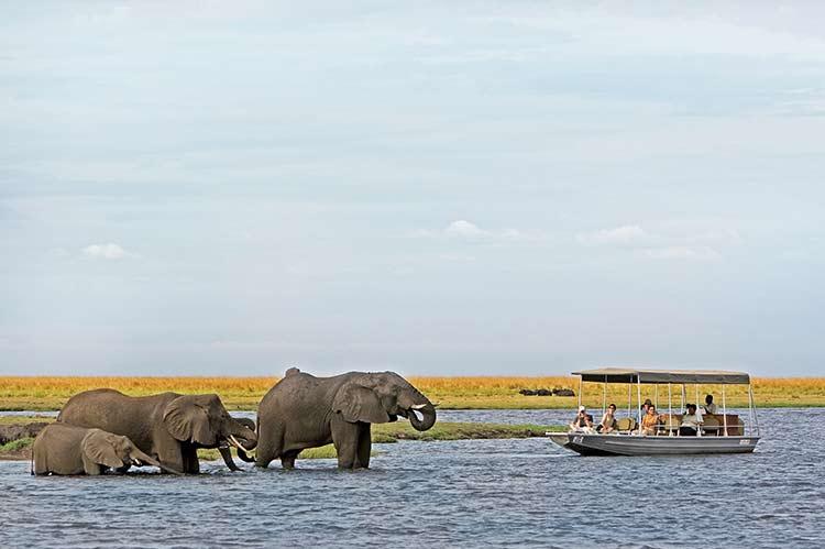 Visit Chobe National Park Discover Botswana Safari Specialists - Chobe river