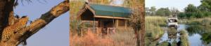 Bush Ways Mobiles, Sango Safari Camp & Wildlife