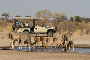 Dinaka desert Botswana Safari Specialists