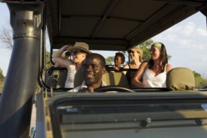 safari, botswana, game drive, vehicle