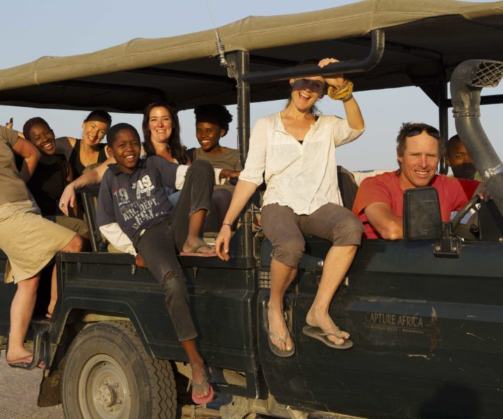 safari, botswana, game drive, safari specialits