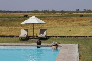safari, botswana, lodge, swimming pool