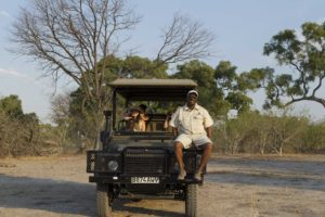 game drive tracker botswana safari