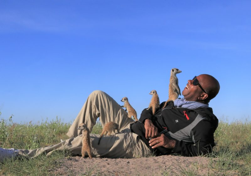 jacks camp meerkats botswana safari specialists natural selection