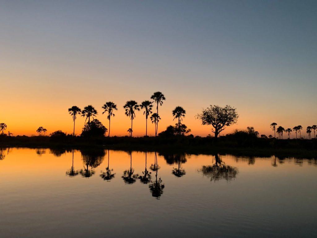 Okavango Delta beauty